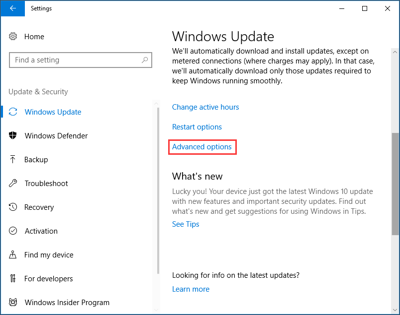 disable windows update 10 home