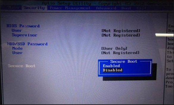 disable secure boot