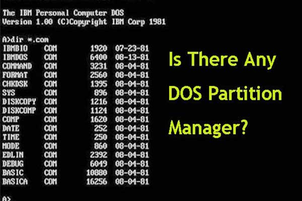 DOS partition manager
