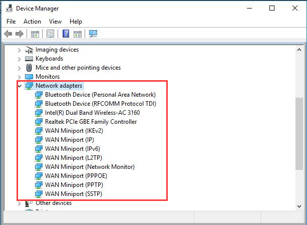 check the network adapters in Device Manager
