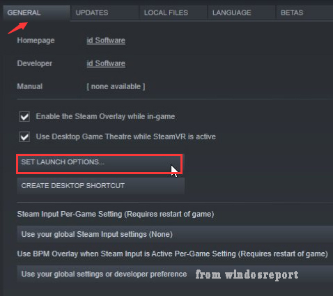 click on Set Launch Options in Steam