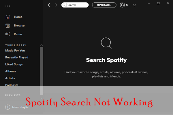 Spotify search not working