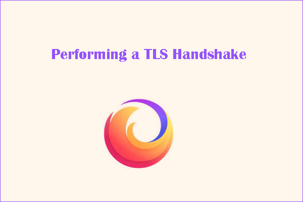 Performing a TLS handshake