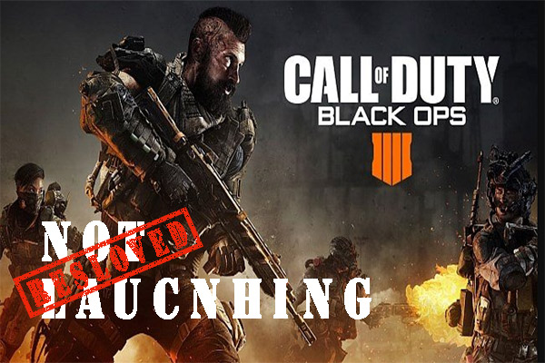 Black Ops 4 won't launch PC