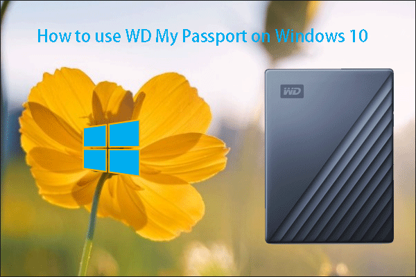 how to use WD My Passport on Windows 10